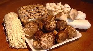 Asian Mushroom Complex