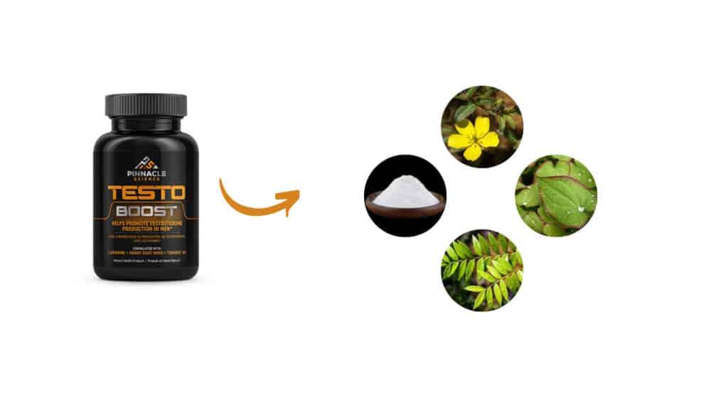 Pinnacle Science Testo Boost Ingredients