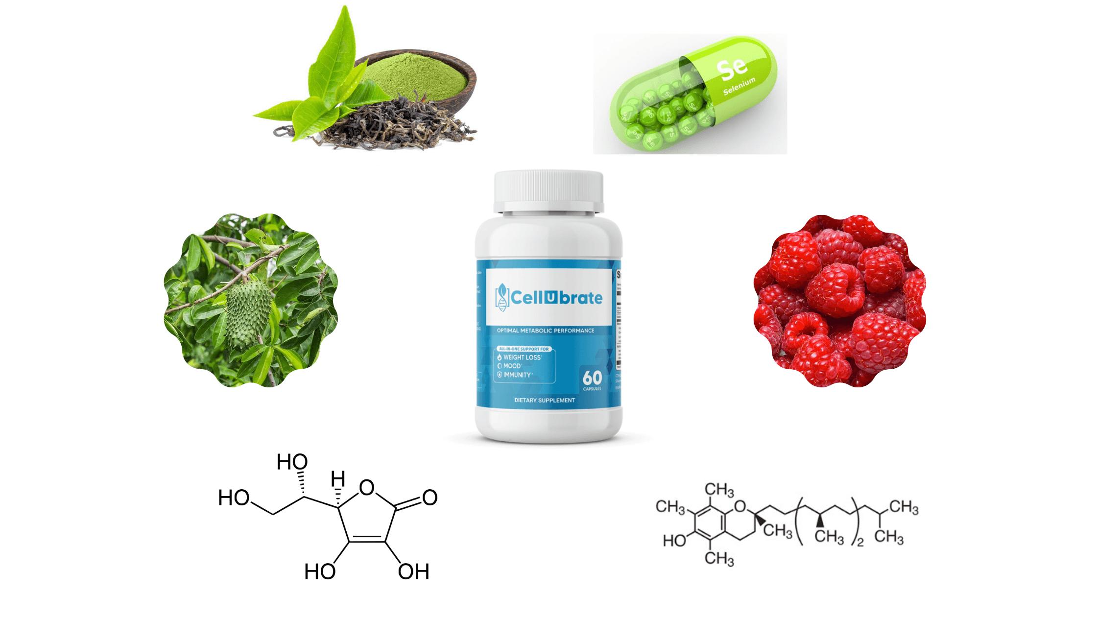 Cellubrate Ingredients