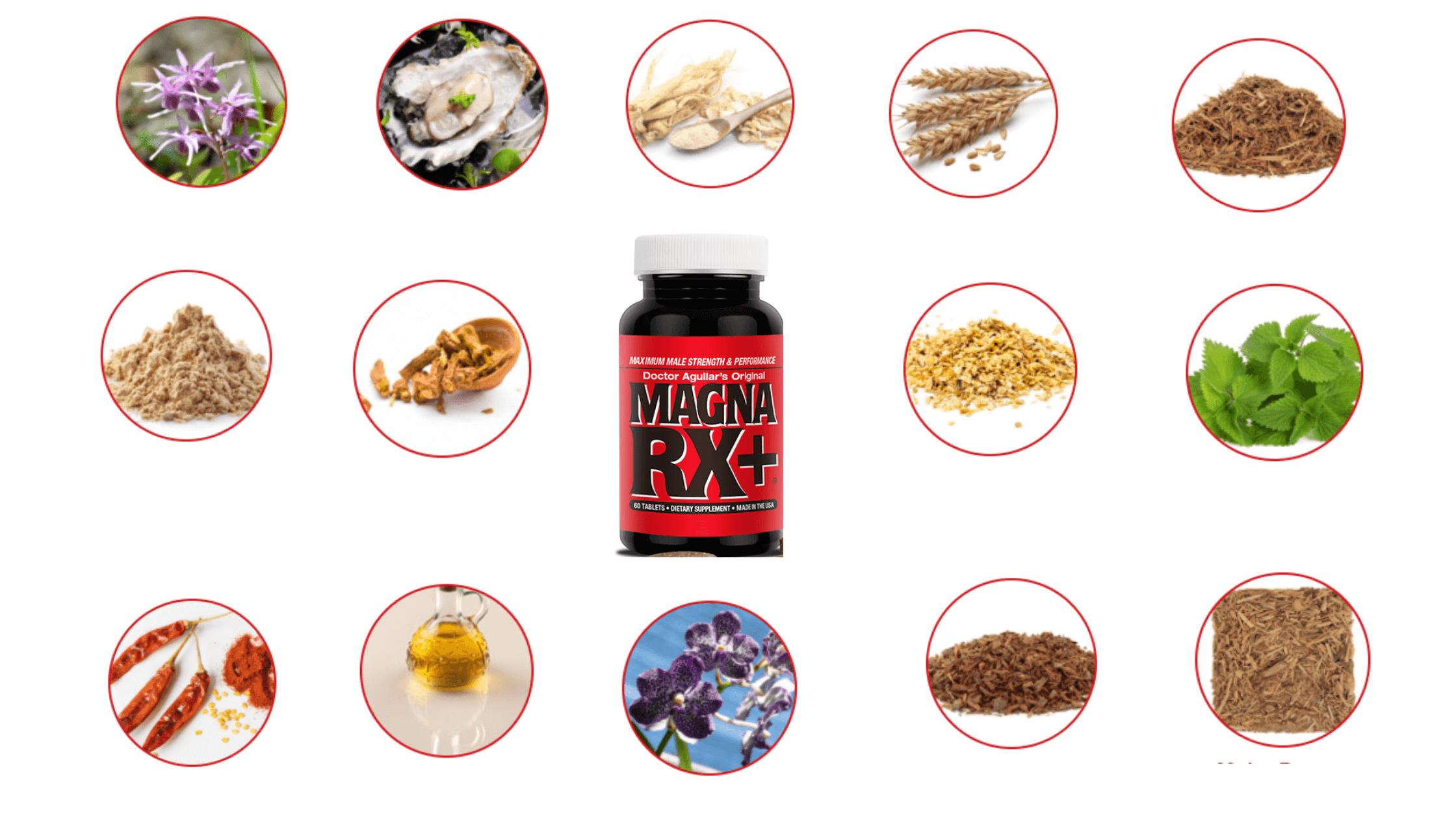 Magna RX Plus Ingredients